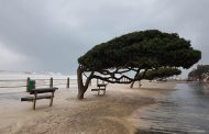Businesses urged to assess risk management policies post Cape Storm