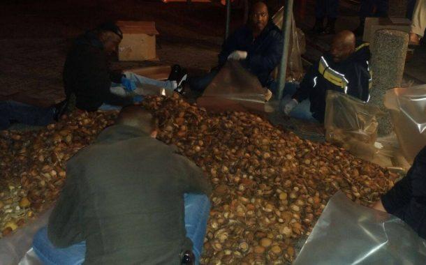 R6 million Abalone bust at Site B, Khayelitsha.