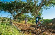 Five from five for leading Amabokkebokkies on joBerg2c day 6