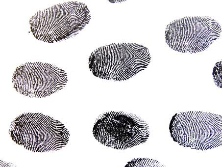 """SAPS assure that the Automated Fingerprint Identification System (AFIS) has not been """"disabled"""""""