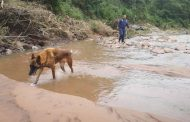 Search and rescue team search for missing victim after KZN floods