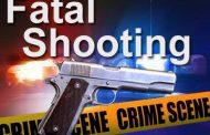 IFP branch member gunned down outside KZN voting station
