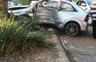 Gauteng: Young boy killed following collision with a tree in Melrose