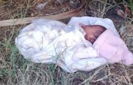 Outcry after yet another baby is dumped in Durban