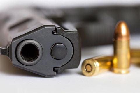 Firearm amnesty guidelines