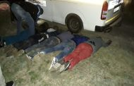 Four suspects arrested transporting suspected stolen sheep
