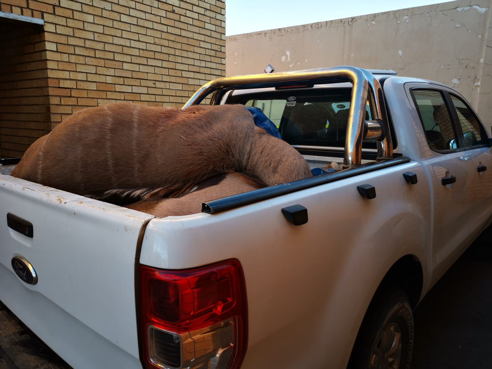 Three men arrested for illegal hunting in Kuruman