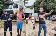 Black Mamba Found In Truck Yard in Oaklands, KZN